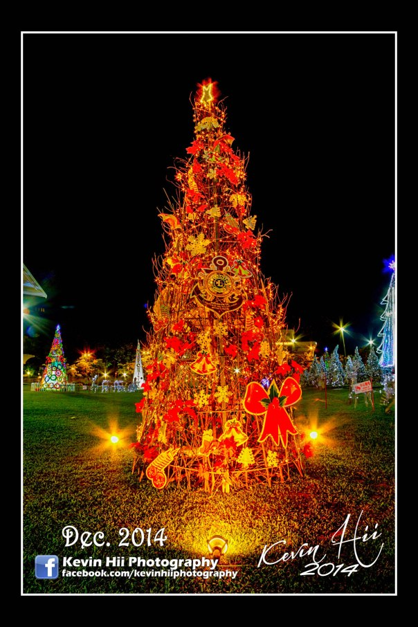 Kevin Hii_Sibu_Christmas Tree-12