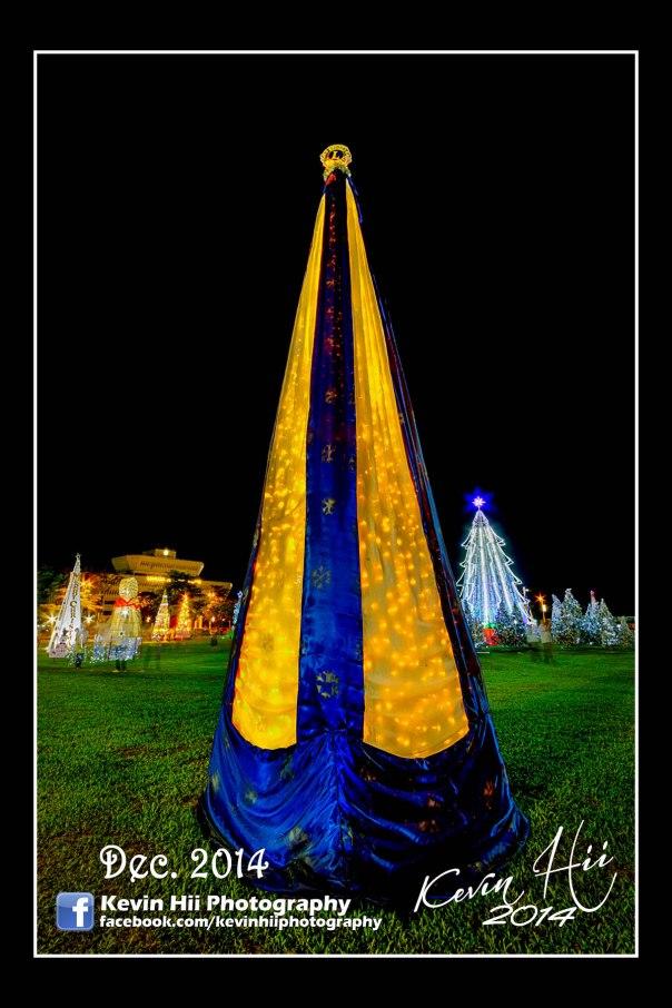 Kevin Hii_Sibu_Christmas Tree-13